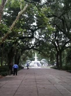 Savannah11